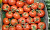 box of big and juicy red tomatoes for sale at a local market stall