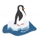 Cute penguin on a piece of iceberg