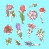 Vector hand drawn flowers stickers set illustration isolated on blue background