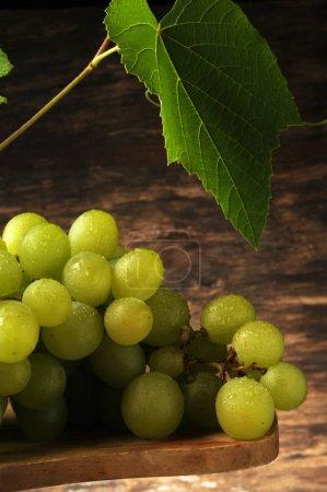 Photo pour Bouquet de raisins de table - image libre de droit