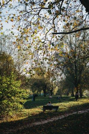 Photo pour Londres, Uk - 27 octobre 2018: Personne assis sur un banc, relaxant de l'étang à Hampstead Heath. Hampstead Heath couvre 320 hectares un des espaces ouverts plus populaires de Londres. - image libre de droit