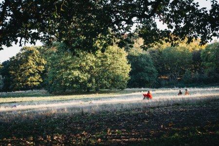Photo pour Londres, Uk - 27 octobre 2018: Femme dans un rouge cavalier assis sur l'herbe, lecture sur une journée ensoleillée à Hampstead Heath. Hampstead Heath couvre 320 hectares un des espaces ouverts plus populaires de Londres. - image libre de droit