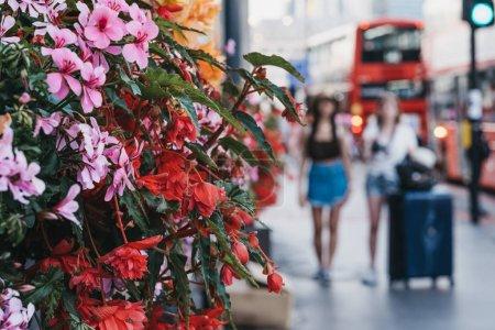 Photo pour Touristes non identifiés avec des bagages marchant dans une rue de Londres, au Royaume-Uni, devant le bâtiment avec des fleurs florissantes. Focus sélectif, concept de voyage . - image libre de droit