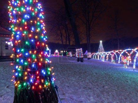 Photo pour Les lumières multicolores de corde de Noël de LED enveloppent le tronc d'un arbre avec des allées voûtées en arrière-plan à un affichage de festival de lumières de vacances . - image libre de droit