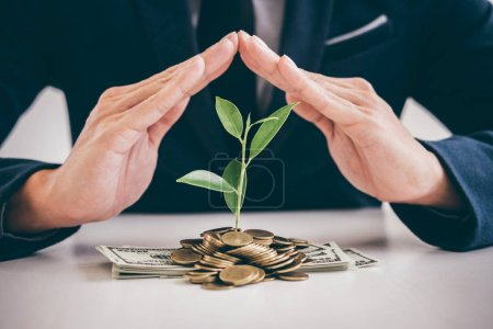 Hands of businessman protection plant sprouting growing from golden coins and banknotes, business investment and strategy concept.
