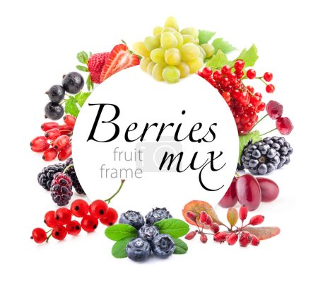 Photo for Various fresh summer berries with white inscription frame - Royalty Free Image