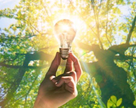 Photo for Hand holding light bulb with sunshine inside. Environment, eco technology and solar energy concept. - Royalty Free Image