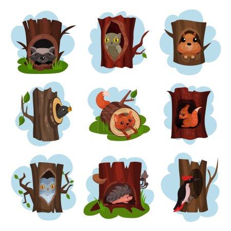 Illustration pour Animaux et oiseaux mignons assis dans le creux des arbres ensemble, creusé de vieux arbres avec renard, hibou, hérissons, raton laveur, pic, écureuil animaux à l'intérieur vecteur de dessin animé Illustrations sur un fond blanc - image libre de droit