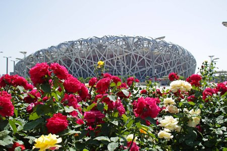 Photo of stadium with flowers.