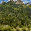 Trail to the top of the Three Crowns in Pieniny mo...
