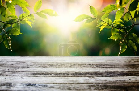 Photo for Summer background with green  young foliage and empty wooden table in nature outdoor. Natural template with Beauty bokeh and sunlight - Royalty Free Image