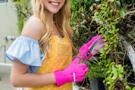 cropped shot of smiling young woman with scissors working in greenhouse