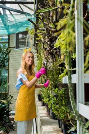 beautiful smiling young woman in apron and rubber gloves working with plants in greenhouse