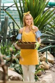 attractive smiling young woman holding box with gardening tools and looking away in greenhouse