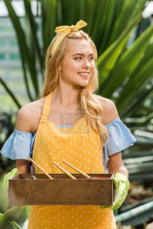 attractive young woman holding box with gardening tools and flower pots