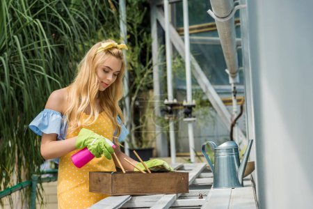 beautiful young woman in rubber gloves holding sprayer and growing plants in greenhouse