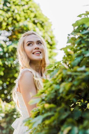 beautiful happy blonde woman smiling and looking up between green plants