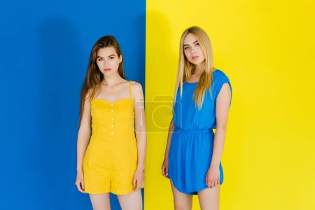 Elegant stylish women in blue and yellow clothes on blue and yellow background