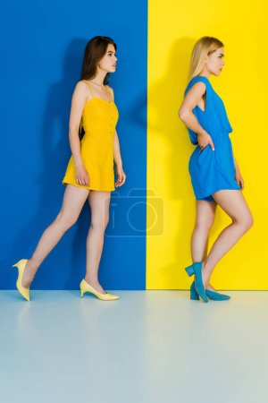 Elegant stylish women in summer garments on blue and yellow background