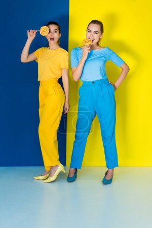 Elegant stylish women eating lollipops on blue and yellow background