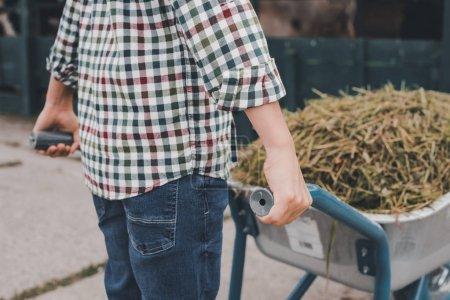 cropped shot of child in checkered shirt pushing wheelbarrow on farm