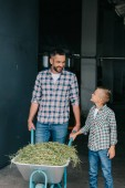 happy father and son pushing wheelbarrow with grass and smiling each other in stall