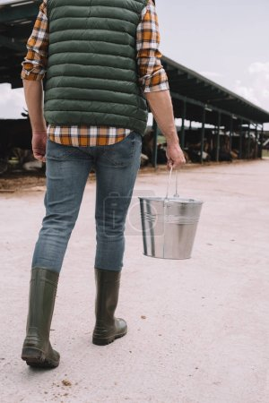 cropped shot of farmer in rubber boots holding bucket and walking in cowshed