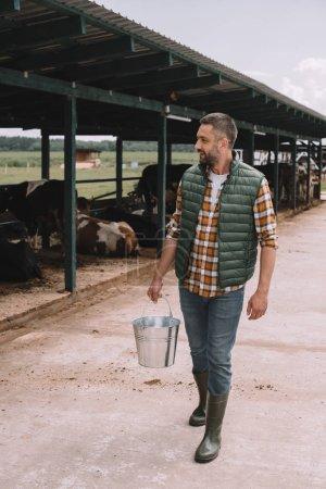 beau agriculteur tenant seau et en regardant les vaches dans l'étable