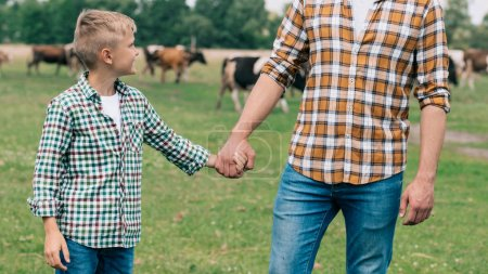 cropped shot of father and smiling son holding hands at farm