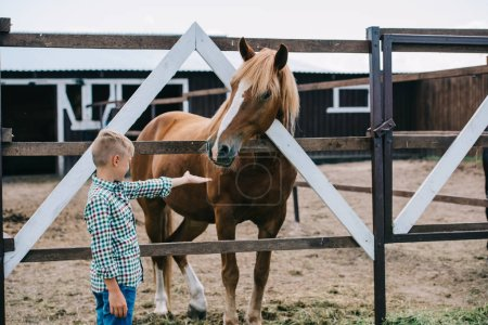 side view of boy reaching hand and lookign at beautiful horse at ranch
