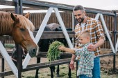 happy father looking at little son feeding horse at farm