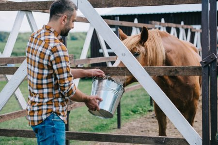 middle aged farmer holding bucket and feeding horse in stable