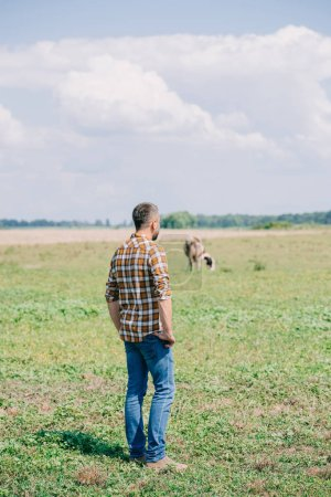 back view of mid adult farmer in checkered shirt standing and looking at field
