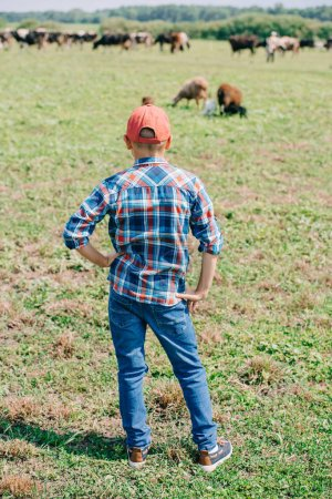 rear view of boy in checkered shirt standing and looking at cows grazing in field