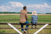 back view of father and son sitting on fence and looking at green  field