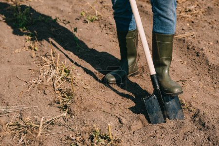 cropped shot of farmer in rubber boots working with shovel in field
