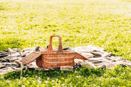 close-up view of picnic basket and plaid on green lawn in park