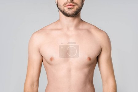 cropped shot of shirtless man isolated on grey