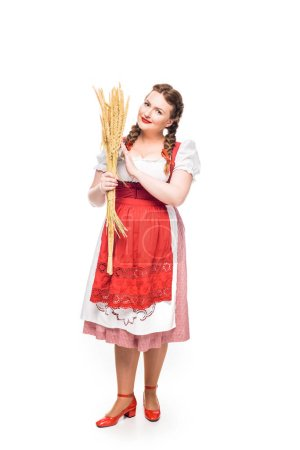 attractive oktoberfest waitress in traditional bavarian dress holding wheat isolated on white background