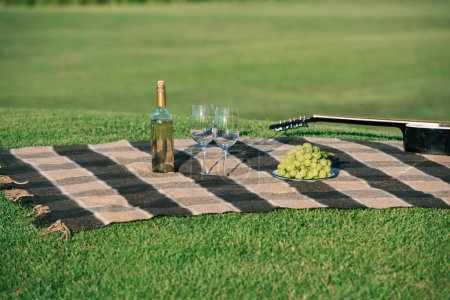 picnic with bottle of white wine, grapes and acoustic guitar on blanket on lawn