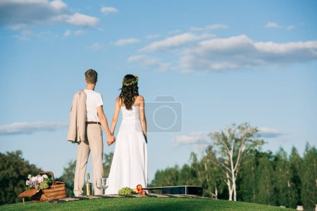 back view of wedding couple holding hands on picnic with guitar