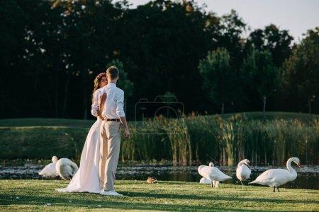 Photo pour Romantique jeune couple de mariage debout sur herbe verte près du lac avec de beaux cygnes - image libre de droit