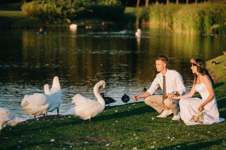 Photo pour Heureux jeune couple de mariage nourrir cygnes dans le parc - image libre de droit