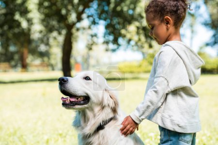 Photo for Side view of adorable african american kid palming golden retriever in park - Royalty Free Image