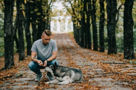 handsome man with husky dog in autumn park