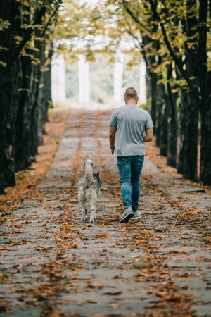 back view of man walking with siberian husky dog in autumn park