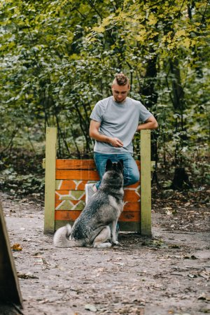 young man training with obedient husky dog on jumping obstacle