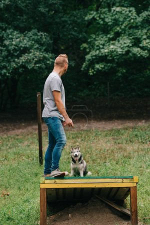 cynologist with siberian husky on dog walk obstacle in obedience class