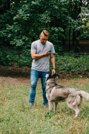 handsome man playing ball with siberian husky dog in park