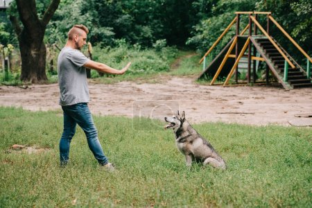 man gesturing command to sit with siberian husky dog in park